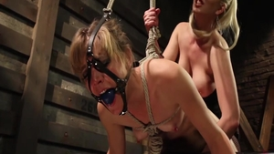 Small tits Mona Wales sex toys in fishnet